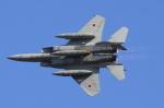 多楽さんが、茨城空港で撮影した航空自衛隊 F-15J Eagleの航空フォト(写真)