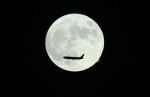 VIPERさんが、羽田空港で撮影した日本航空 767-346/ERの航空フォト(写真)