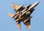 allnipponairwaysさんが、茨城空港で撮影した航空自衛隊 F-15J Eagleの航空フォト(写真)