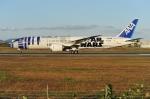 青路村さんが、伊丹空港で撮影した全日空 787-9の航空フォト(写真)