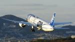 誘喜さんが、伊丹空港で撮影した全日空 787-9の航空フォト(写真)