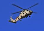 kamerajiijiさんが、入間飛行場で撮影した海上自衛隊 SH-60Jの航空フォト(写真)