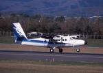 元青森人さんが、函館空港で撮影したエアー北海道 DHC-6-300 Twin Otterの航空フォト(写真)