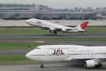 kososhihashimotoさんが、羽田空港で撮影した日本航空 747-446Dの航空フォト(写真)