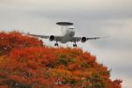 はやっち!さんが、岐阜基地で撮影した航空自衛隊 E-767 (767-27C/ER)の航空フォト(写真)