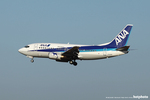 marbomitsuさんが、成田国際空港で撮影したANAウイングス 737-5L9の航空フォト(写真)
