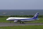 senyoさんが、新潟空港で撮影した全日空 A320-211の航空フォト(写真)