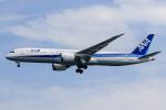 xingyeさんが、羽田空港で撮影した全日空 787-9の航空フォト(写真)