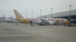 kenmariさんが、関西国際空港で撮影したスクート 787-9の航空フォト(写真)