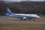 endress voyageさんが、岡山空港で撮影した全日空 A320-211の航空フォト(写真)