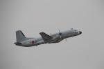 SALLY30さんが、名古屋飛行場で撮影した航空自衛隊 YS-11A-402EAの航空フォト(写真)