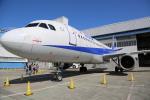 Fly Yokotayaさんが、伊丹空港で撮影した全日空 A320-211の航空フォト(写真)