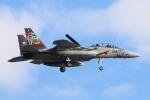 なごやんさんが、千歳基地で撮影した航空自衛隊 F-15DJ Eagleの航空フォト(写真)