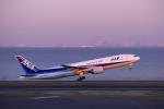 comさんが、羽田空港で撮影した全日空 777-281の航空フォト(写真)