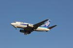 タイ国際航空さんが、成田国際空港で撮影したANAウイングス 737-5L9の航空フォト(写真)