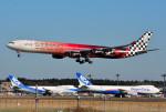 さくらの城南山。さんが、成田国際空港で撮影したエティハド航空 A340-642Xの航空フォト(写真)