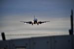 成田国際空港 - Narita International Airport [NRT/RJAA]で撮影されたANAウイングス - ANA Wings [EH/AKX]の航空機写真