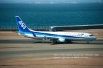 かみきりむしさんが、中部国際空港で撮影した全日空 737-881の航空フォト(写真)