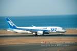かみきりむしさんが、中部国際空港で撮影した全日空 787-8 Dreamlinerの航空フォト(写真)