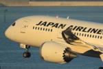 VIPERさんが、羽田空港で撮影した日本航空 787-846の航空フォト(写真)