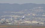 fukucyanさんが、伊丹空港で撮影した全日空 767-381の航空フォト(写真)