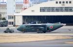 なごやんさんが、名古屋飛行場で撮影した航空自衛隊 C-130H Herculesの航空フォト(写真)