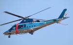 なごやんさんが、名古屋飛行場で撮影した兼松 A109E Powerの航空フォト(写真)