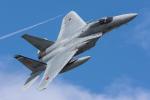 TBさんが、那覇空港で撮影した航空自衛隊 F-15J Eagleの航空フォト(写真)