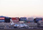 Hiroyuki.Sさんが、福岡空港で撮影した日本航空 747-146B/SR/SUDの航空フォト(写真)