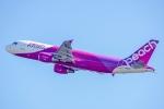 Ariesさんが、関西国際空港で撮影したピーチ A320-214の航空フォト(写真)