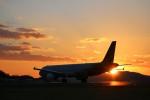 musashiさんが、高松空港で撮影したアシアナ航空 A321-231の航空フォト(写真)