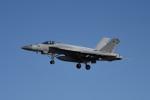 tsubasa0624さんが、厚木飛行場で撮影したアメリカ海軍 F/A-18E SUPER HORNETの航空フォト(写真)