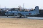 ショウさんが、入間飛行場で撮影した航空自衛隊 YS-11A-402EBの航空フォト(写真)