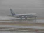 ぬま_FJHさんが、羽田空港で撮影した全日空 767-381の航空フォト(写真)