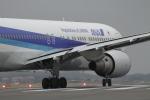 takakei21892000さんが、鹿児島空港で撮影した全日空 767-381の航空フォト(写真)
