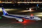 新海 元さんが、羽田空港で撮影した全日空 787-881の航空フォト(写真)