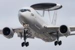 pinamaさんが、岐阜基地で撮影した航空自衛隊 E-767 (767-27C/ER)の航空フォト(写真)