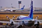 うらしまさんが、高松空港で撮影したエアーニッポン YS-11A-500の航空フォト(写真)