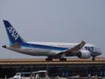 ken1☆MYJさんが、松山空港で撮影した全日空 787-881の航空フォト(写真)