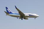 takutakuさんが、福岡空港で撮影した全日空 737-781/ERの航空フォト(写真)