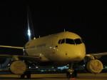 Sorakara_gonさんが、成田国際空港で撮影したロスアバロンアクスポルト 100-95LRの航空フォト(写真)