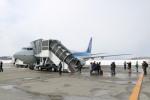watreeさんが、紋別空港で撮影した全日空 737-881の航空フォト(写真)