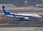 51ANさんが、成田国際空港で撮影した全日空 737-781/ERの航空フォト(写真)