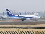 msrwさんが、成田国際空港で撮影した全日空 737-781/ERの航空フォト(写真)