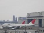 新人スマイスさんが、成田国際空港で撮影した日本航空 747-246F/SCDの航空フォト(写真)