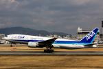 こだしさんが、伊丹空港で撮影した全日空 777-281の航空フォト(写真)