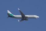 speedbird019さんが、メキシコ・シティ国際空港で撮影したアメリカン航空 737-823の航空フォト(写真)