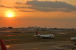 gunmano_kumasanさんが、羽田空港で撮影した日本航空 747-446Dの航空フォト(写真)