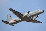 SAWAさんが、入間飛行場で撮影した航空自衛隊 YS-11A-402EAの航空フォト(写真)