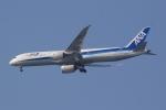 Semirapidさんが、福岡空港で撮影した全日空 787-9の航空フォト(写真)